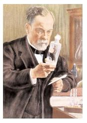 Hailed as the founder of microbiology, Louis Pasteur contributed immensely to the fields of medicine and food safety. He invented pasteurization, which prevents food spoilage, and he developed the technique of vaccination. [Bettman/Corbis. Reproduced by permission.]